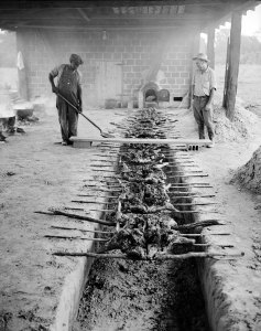Barbequeing pork over an open pit near Rocky Mount, NC, September 1944. From the Conservation and Development Department, Travel and Tourism Photo Files. Call number: ConDev4648.5C. Learn more on Flickr.