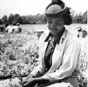 Photograph of a woman in a field near Duck, NC. Call number: PhC_9_2_85_37a