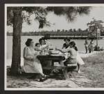 jones_lake_picnic